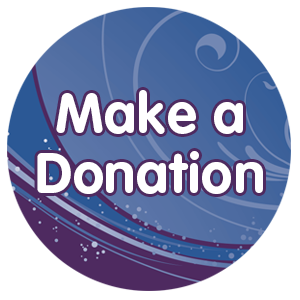 2017 Gala - Donate Now